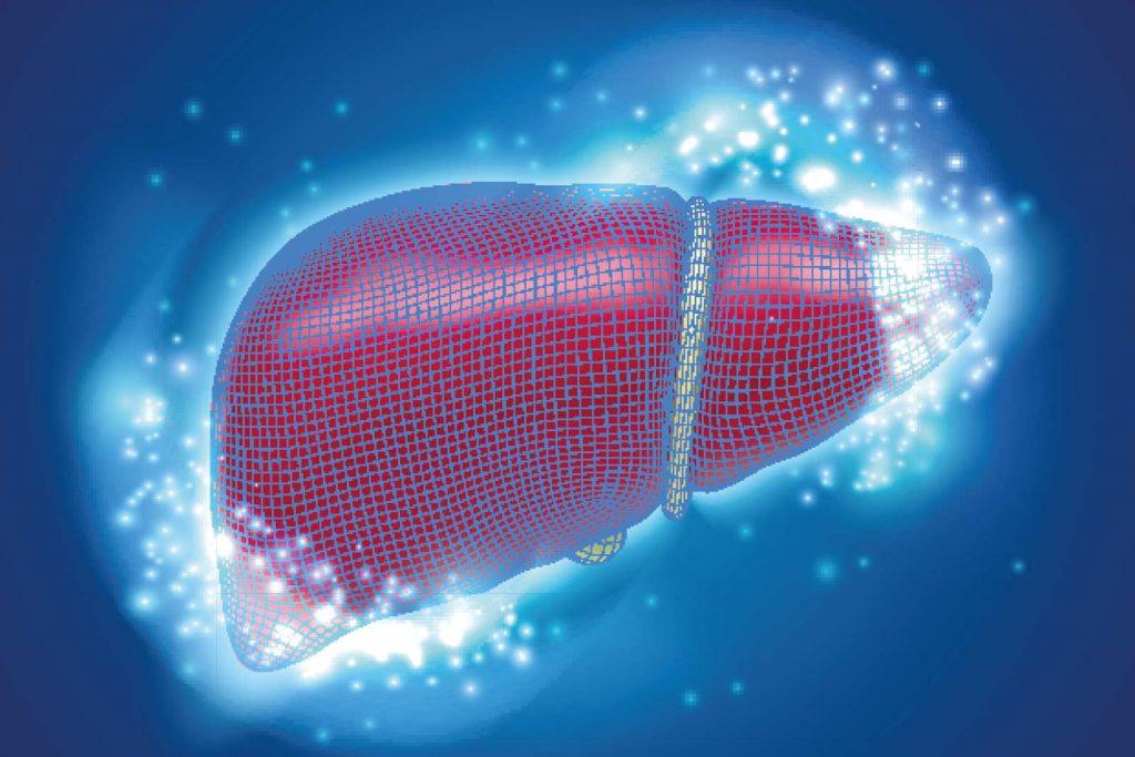 Karaciğer Safra Pankreas Cerrahisi, Genel Cerrahi